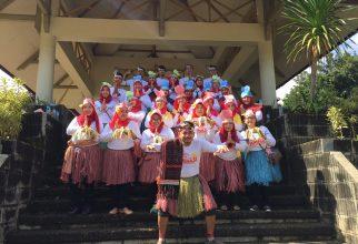 Karnaval Rangkaian Acara Dies Natalis UI ke-68 dihadiri oleh 1.400 Orang